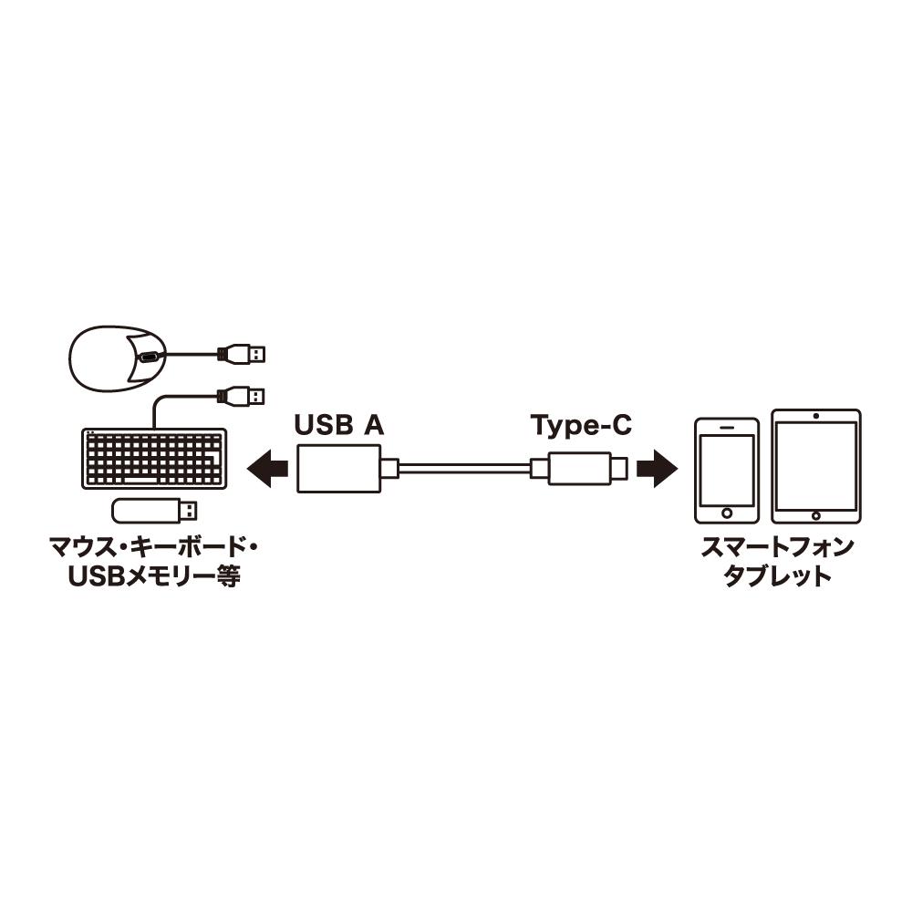 USB Type-C ケーブル ホストケーブル [SCC-HS01]