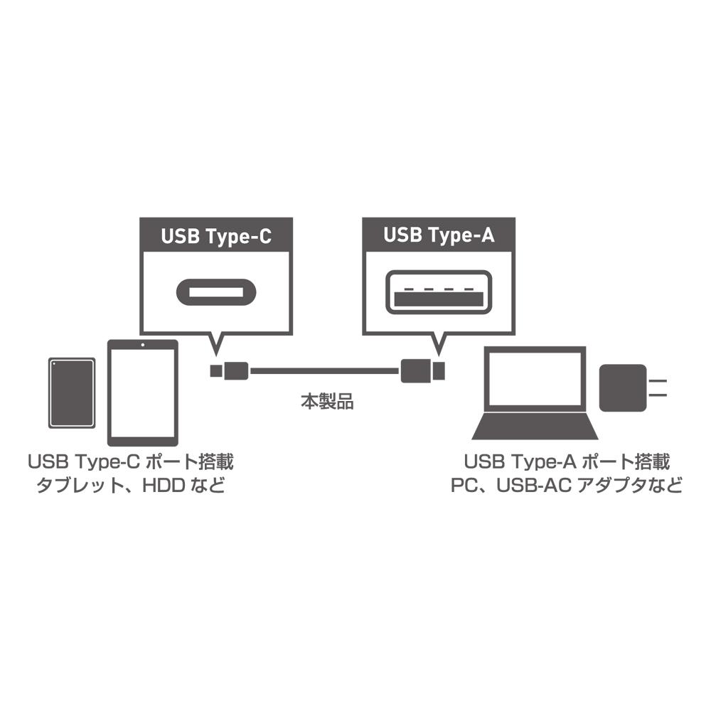 USB3.1ケーブル C-Aコネクタ [USB-CA310]